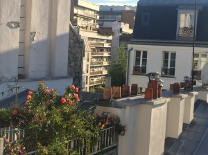 And finally, when you're done tramping the streets and parks and gardens and metros of Paris, it's delicious to come home to an apartment balcony with your own little plot of paradise!